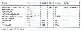 MySQL Tabbellenstruktur anzeigen lassen