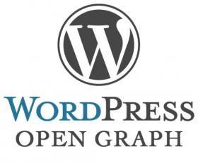 Open Graph in WordPress ohne Plugins